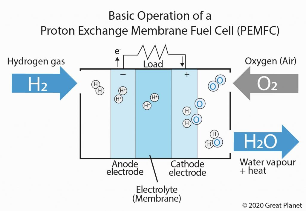 Basic Operation of a Proton Exchange Membrane Fuel Cell (PEMFC)
